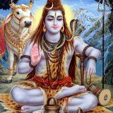エピソード5:インドを一人旅、その後廃人に・・・(24歳)