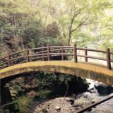 日本人の成功法則と神社の話